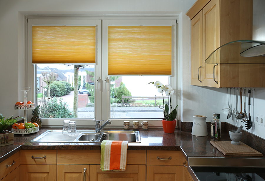 Lumicel honeycomb blinds